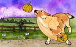Pumpkin Chuckin