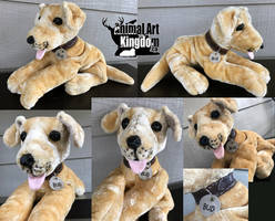 Bud the Golden Lab Floppy Plush by AnimalArtKingdom