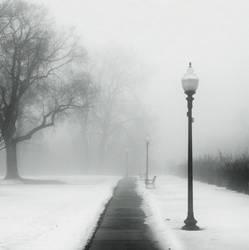 Foggy Day in the Park by jheintz21