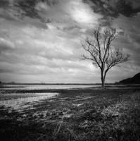 Somewhere in Missouri XI by jheintz21