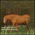 Tripp0099's Icon by Ecroset-of-Autumns