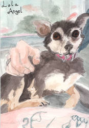 Watercolour pet commission painting 1/3