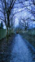 I Walk Alone by LittleMissMischief