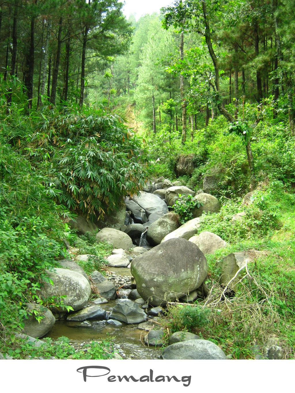 creek by yoxx