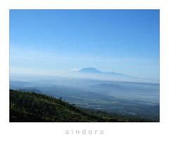 sindoro by yoxx