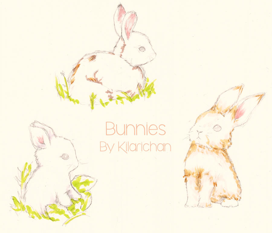 Bunnies by kilari-chan