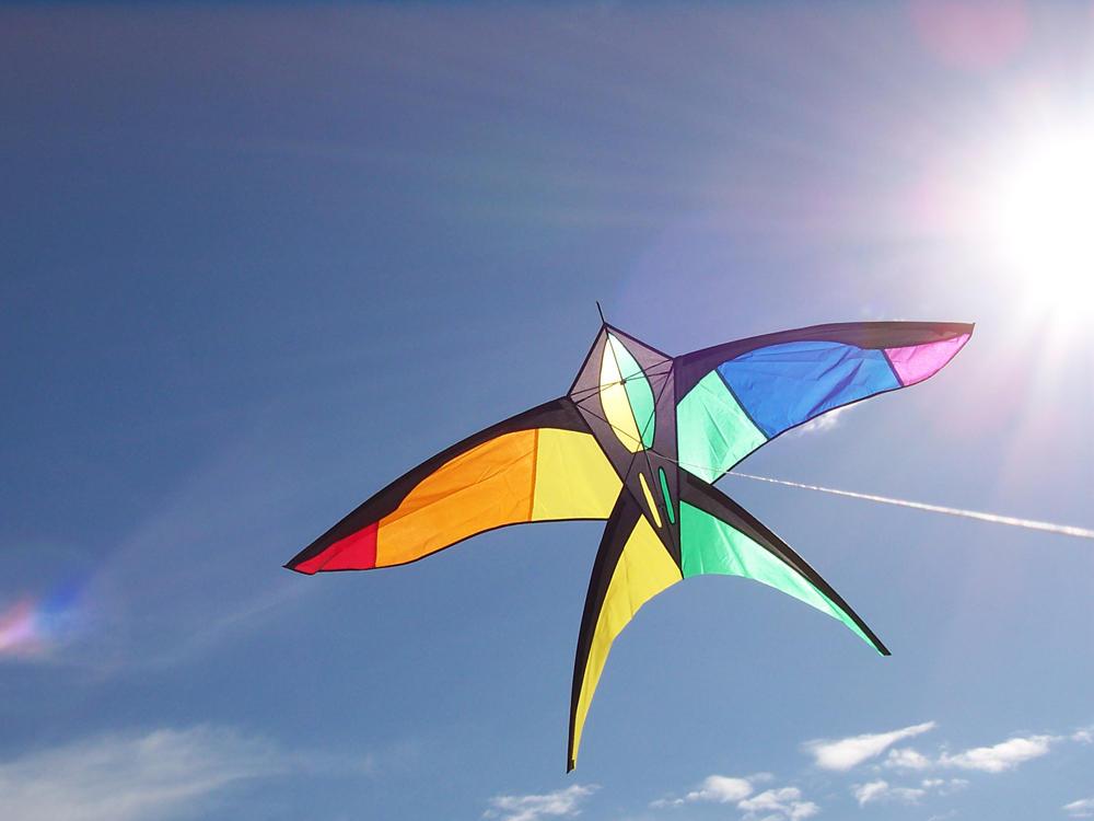 Kite by monsooner