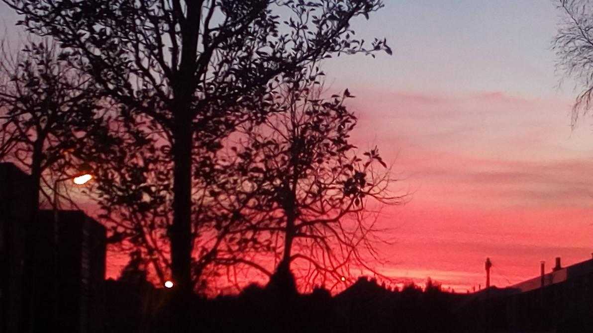 sunset funset  by EmmaS-Bowbie