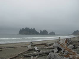 la push by amandaxautomatic