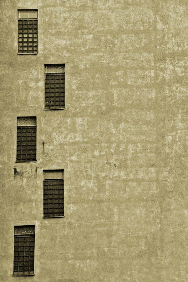 Windows Aligned by malanski