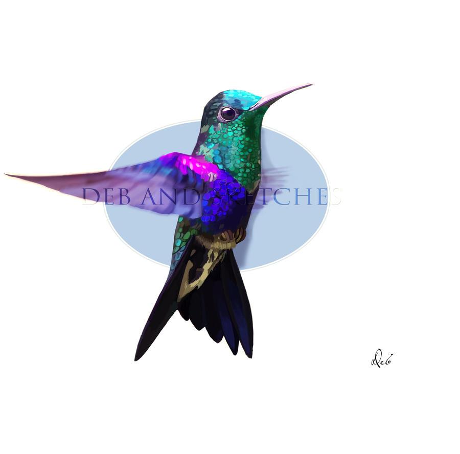Colibri by debandsketches