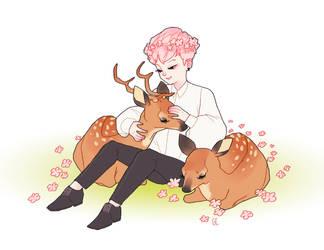 deer whisperer by genicecream