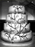 The Wedding Cake by AnnaMarieImages