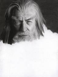 Gandalf the Grey WIP 5