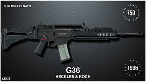 G36 - HECKLER AND KOCH - LEXIS CARDS