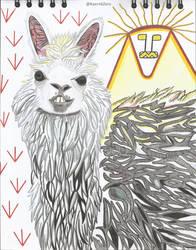 Alpaca by KaernkZero