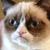 :grumpycat: by tardarsauceplz