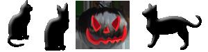 Halloween Pumpkin Black Cat Divider