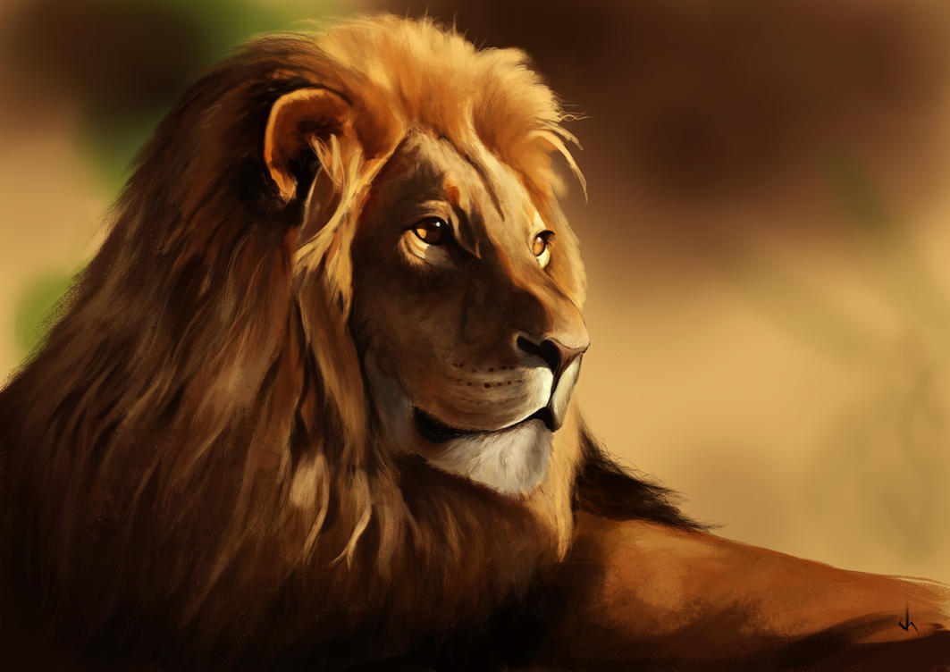 Lion Study by JoshSummana