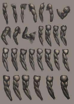 Arm Studies