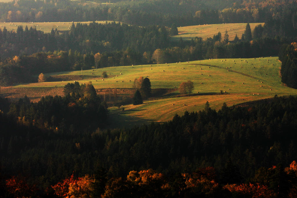 Autumn Meadows by Fotobasa