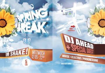 Spring Break Flyer by shuffl3