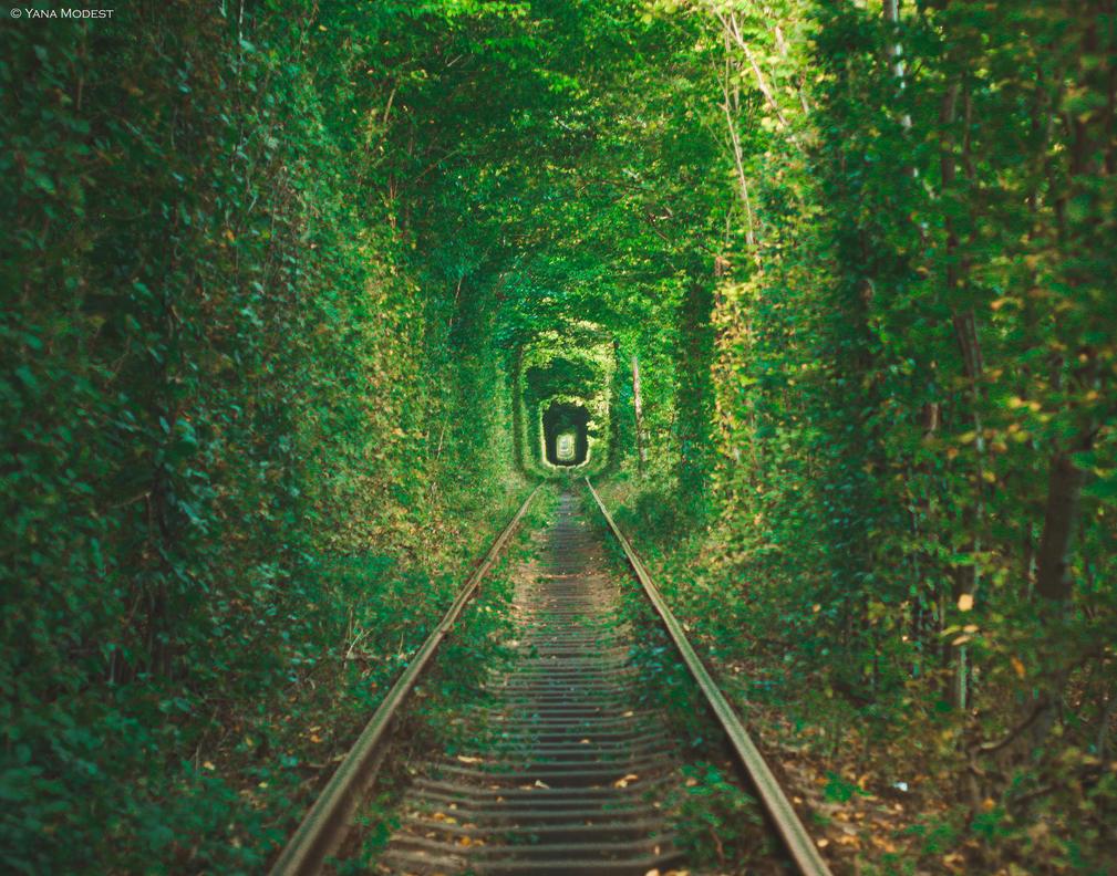 Tunnel of Love, Ukraine by Wolf-X-Parade