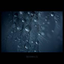 sob universe 4 by yv
