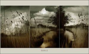 Stillness by yv