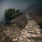 Pico Ruivo - Avoidance