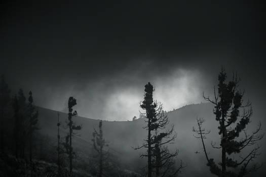 Pico de la Gorra 2