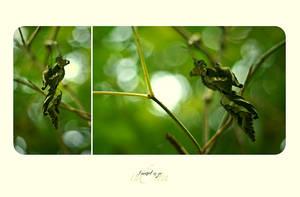 .inErtia. by yv