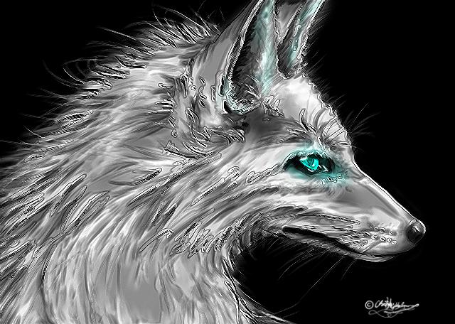 Silver fox by JenovaTheGoddes