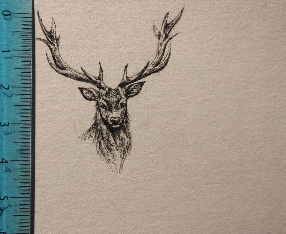 Deer mini portrait by JenovaTheGoddes
