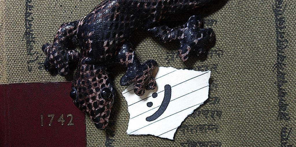 Little Lizard on a Book
