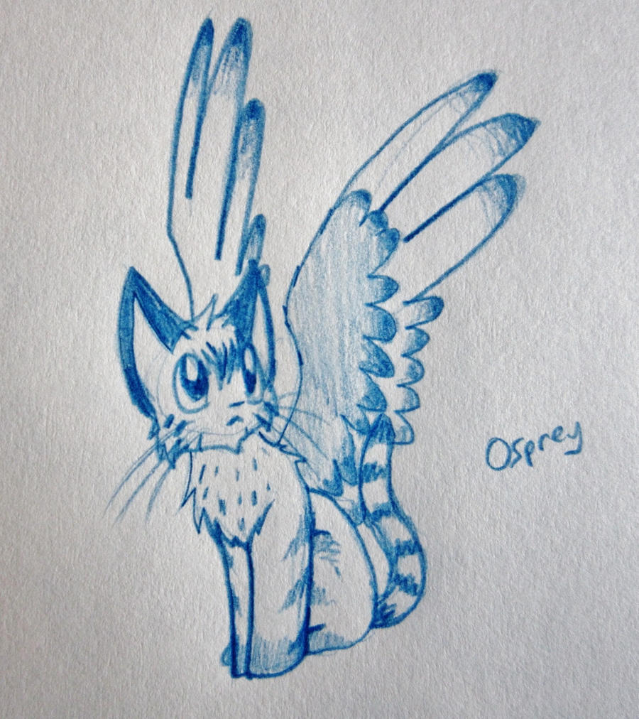 Osprey the Winged Cat by DragonwolfRooke Osprey the Winged Cat by  DragonwolfRooke