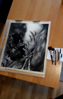 Drawing in charcoal