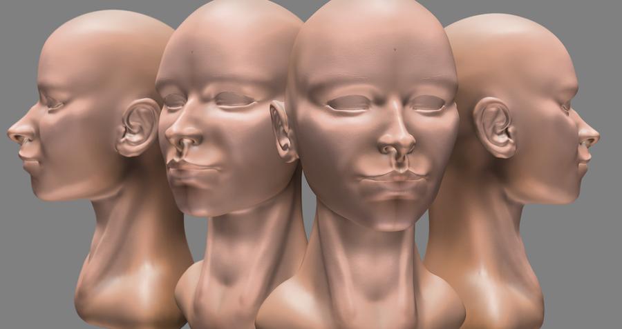 Female Head Sculpt. by Blackjack-Davie
