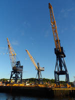 More Sexy Cranes