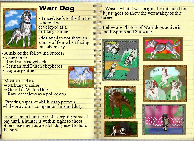 Warr dog: breed Advertisement by blueshinewolfstar1