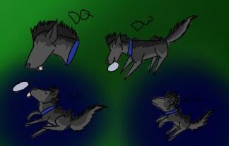 Sheriff's Disc dog titles by blueshinewolfstar1