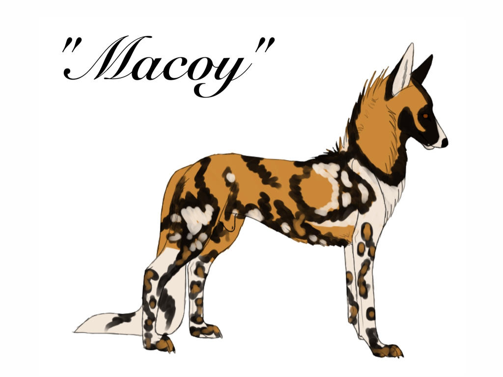 Macoy ref(temp image) by blueshinewolfstar1