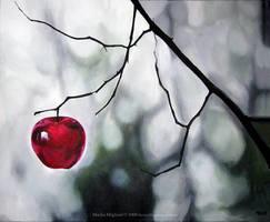 Red apple by MonsterMarika