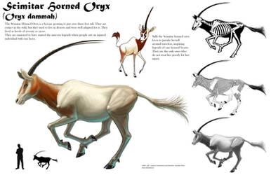 Scimitar Horned Oryx Sheet by Tikall