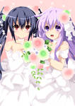 Noire and Nepgear Commission 1 Coloring
