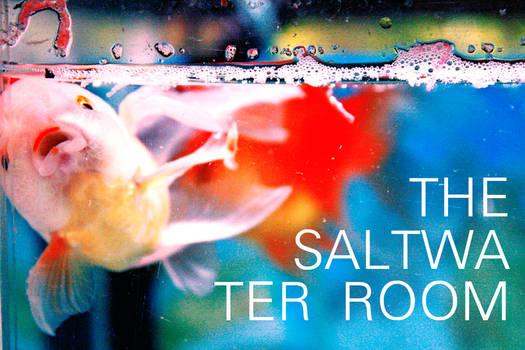 The Saltwater Room III