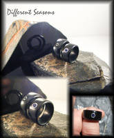 Black Jade and Sapphire Rings by jessa1155
