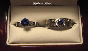 Sapphire and Palladium Rings by jessa1155