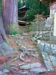 Pagoda in Cedars