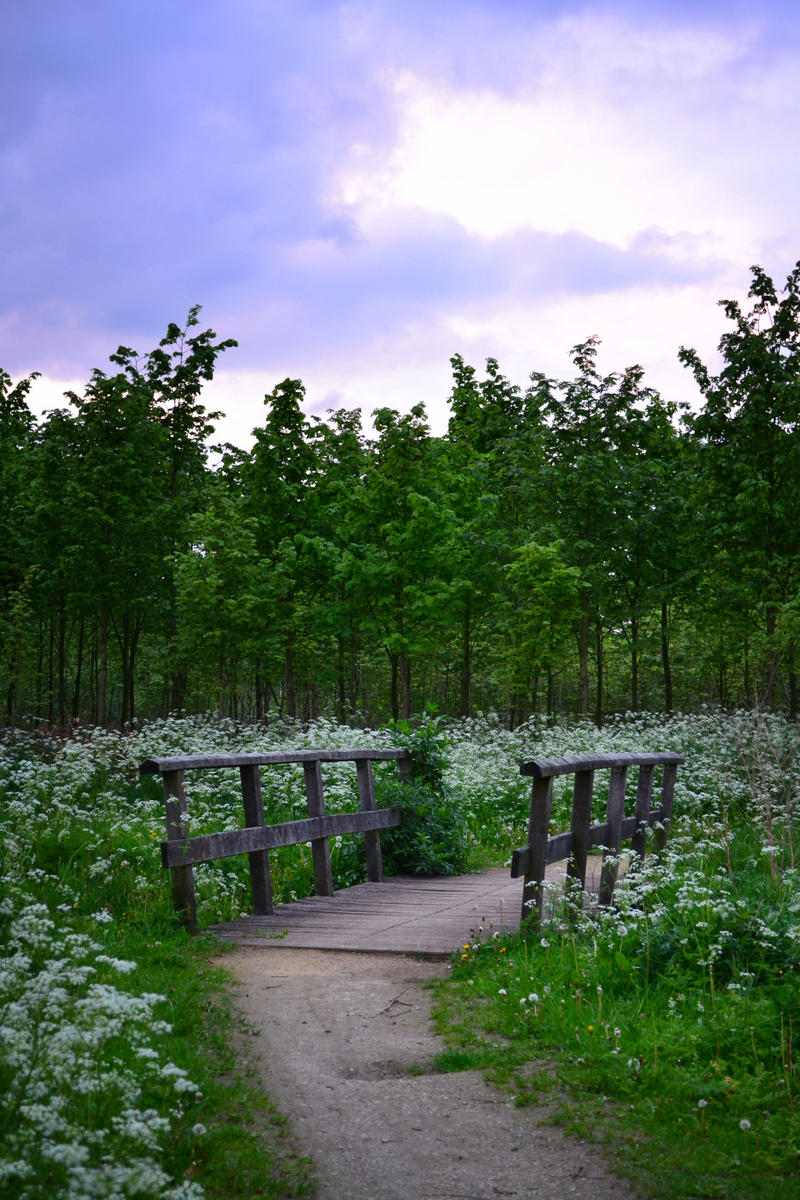 Nature 18 by GardenOfBlackRoses-S